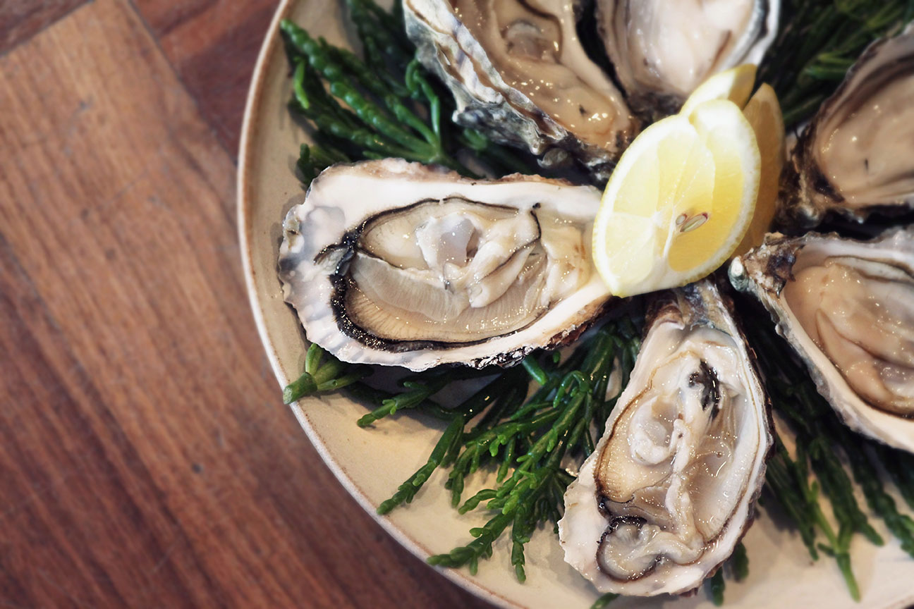 The Remedy oysters