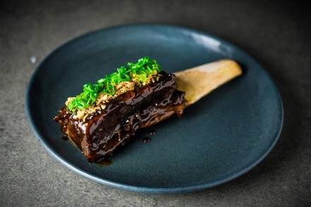 Beef Short Rib ... Dirty Bones edit