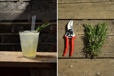 Rosemary Gin Sling edit