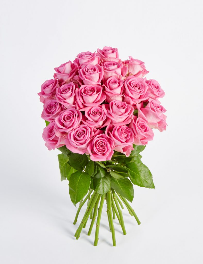Fairtrade Pink Roses £25